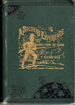 Image for A Soldier's Experience or, a Voice from the Ranks: Showing the Cost of War in Blood & Treasure. A Personal Narrative of the Crimean Campaign, from the Standpoint of the Ranks; the Indian Mutiny, & Some of Its Atrocities, the Afghan Campaigns of 1863, etc.