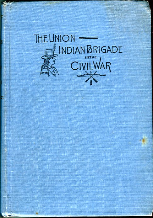 Image for The Union Indian Brigade in the Civil War