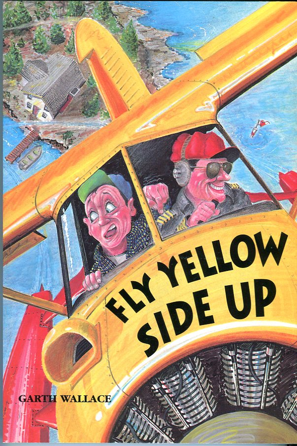 Image for Fly Yellow Side Up