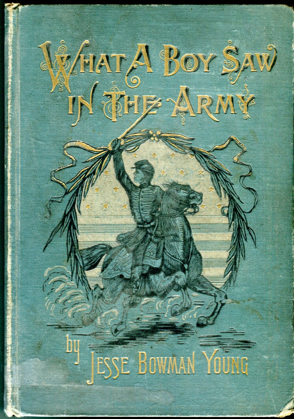 Image for What a Boy Saw in the Army: A Story of Sight-Seeing and Adventure in the War for the Union