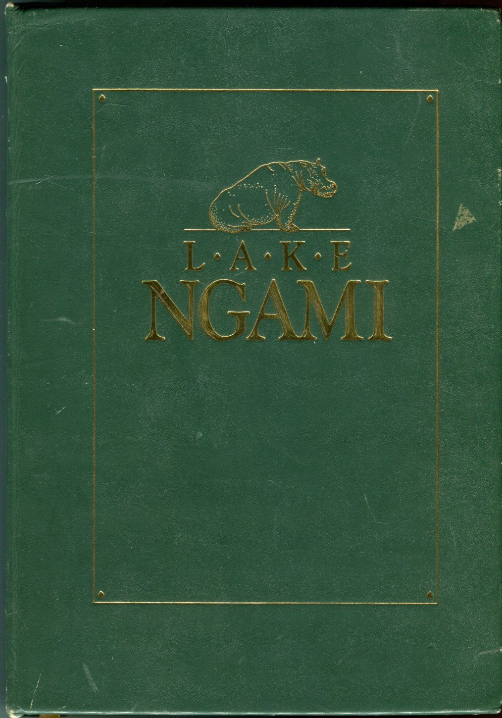 Image for Lake Ngami: Exploration and Discoveries During Four Years' Wanderings in the Wilds of South Western Africa (African Collection)